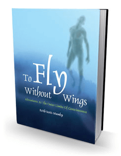 fly-without-wings