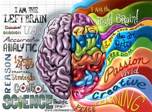 Right-Left Brain Myth