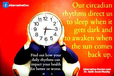 daily rhythms