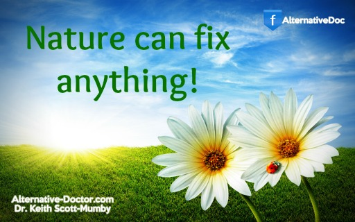 Nature Can Fix Anything!