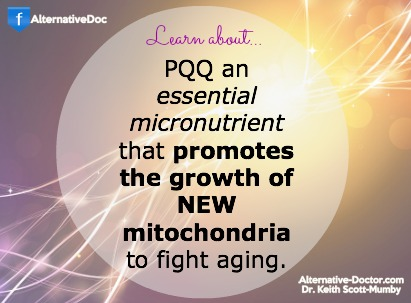 Learn About The Essential Nutrient PQQ To Fight Aging
