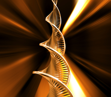 Do Genes Determine Your Health and Your Future Health?