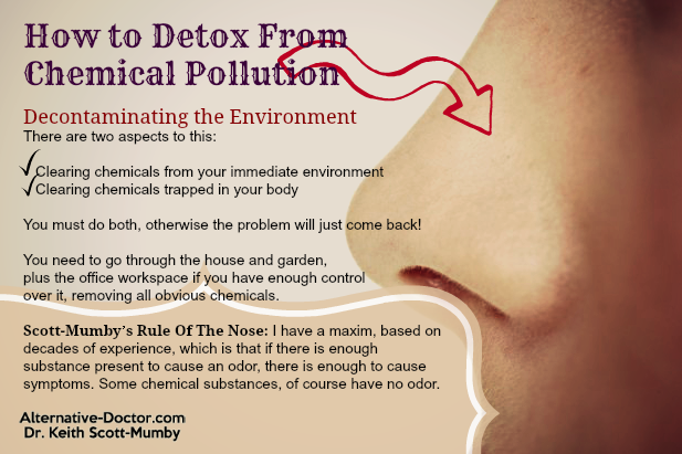 How to Detox from Chemical Pollution