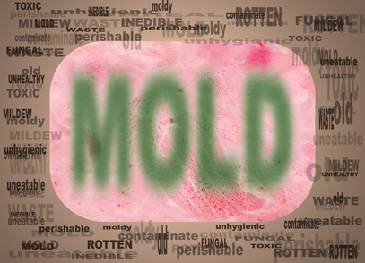 Can Stachybotris Mold Make You Lose Your Mind?