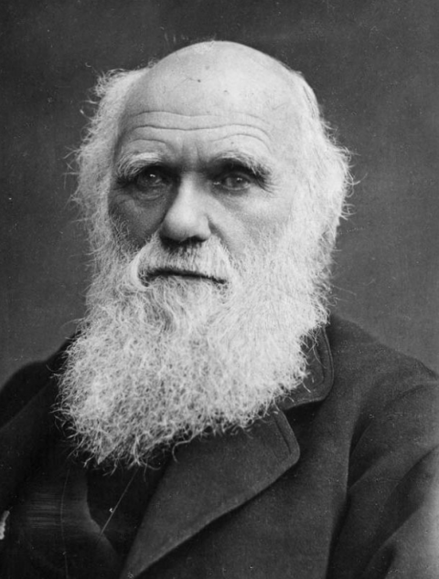 Charles-Darwin-what-is-chronic-fatigue-syndrome