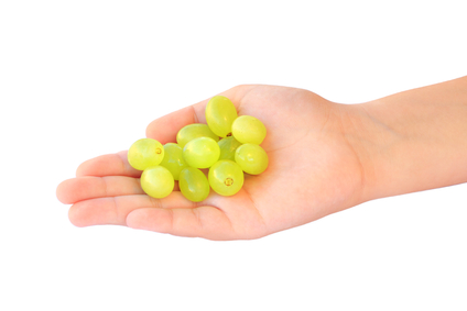 grapes_dangers_of_high_fructose_corn_syrup