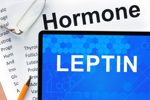 Want to Lose Weight Easily? How to Increase Your Leptin Levels