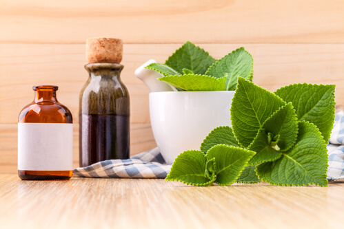 Oil of Oregano Benefits Stronger than Antibiotics?