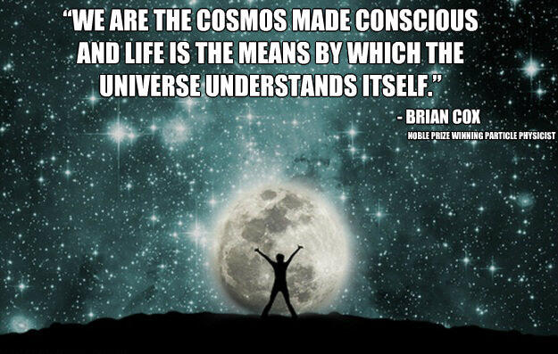 human-Consciousness-Quote