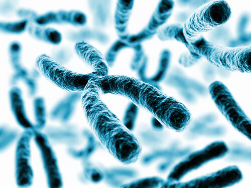 What You Need to Know About Telomere Benefits