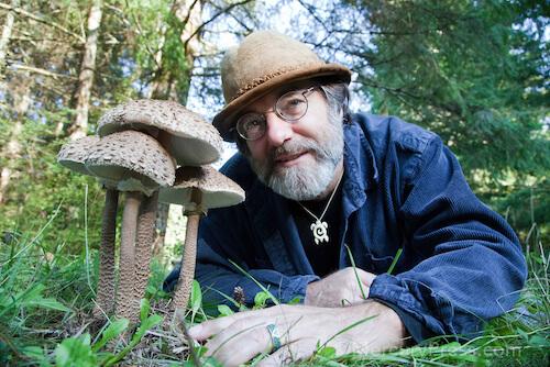dangers-of-fungi-paul-stamets