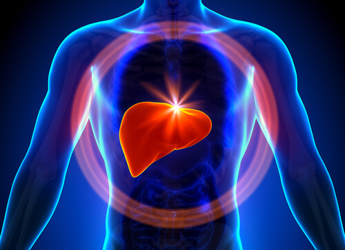 Non-Alcoholic Fatty Liver Disease Problems – A Growing Epidemic