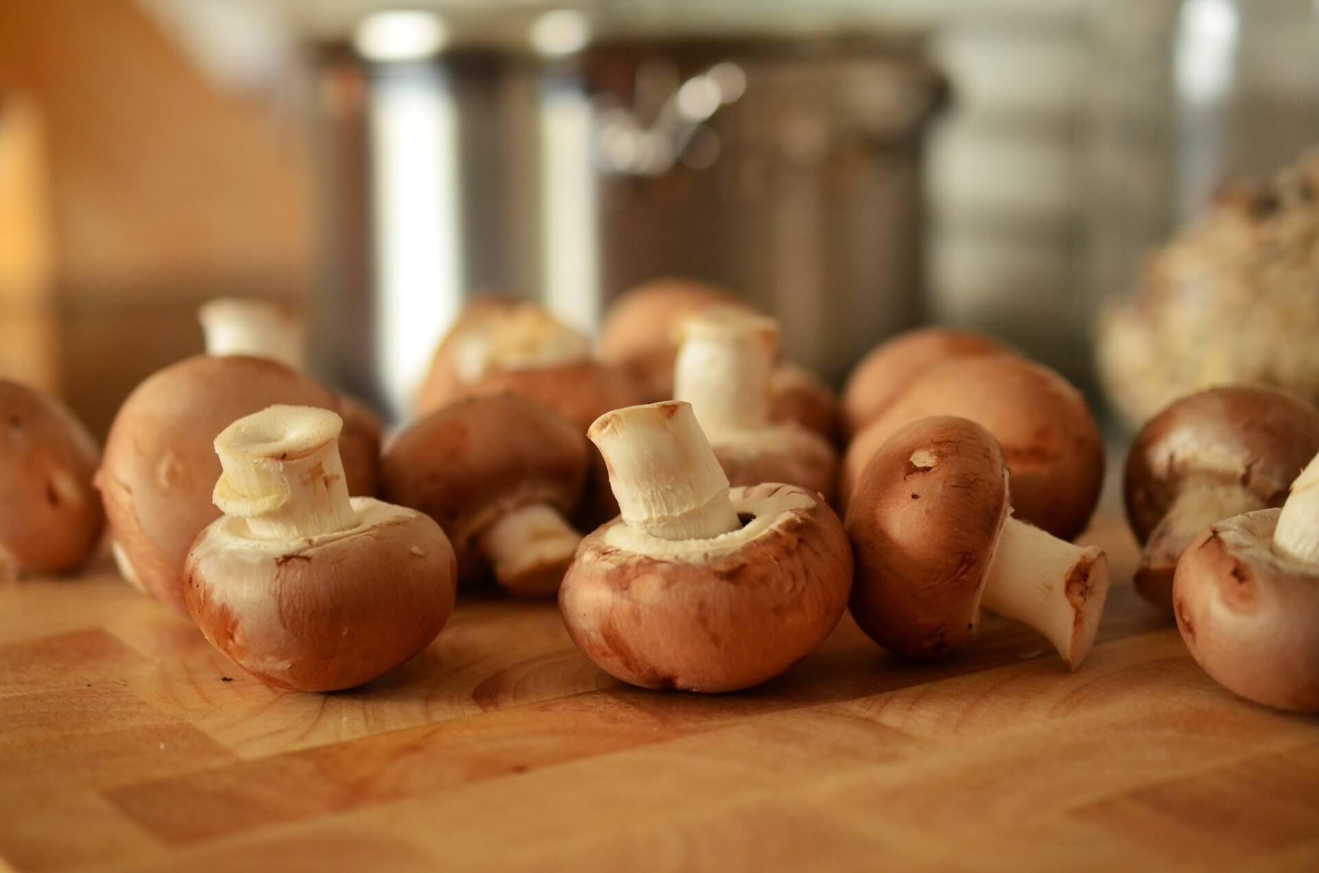 Preventing and Fighting Cancer with 5 Medicinal Mushrooms
