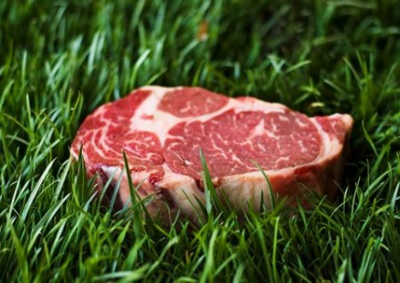 disgusting-ingredients-organic-grass-beef