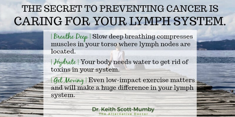 Of course quitting smoking, consumption of alcohol, and changing your diet are all key factors in preventing cancer but did you know that taking care of your lymph system is even more important?