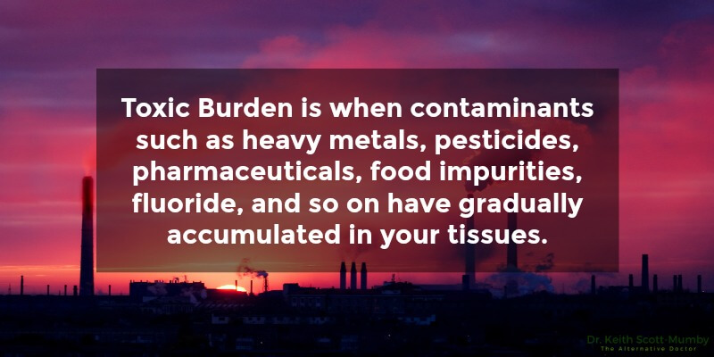 Toxic burden can occur from the environment around you. Are you suffering from it? Find out more now...