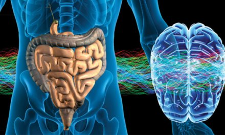 The Gut-Brain Connection Affects Your Entire Body