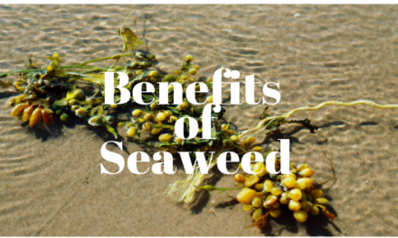 The Incredible Detoxification Benefits of Seaweed
