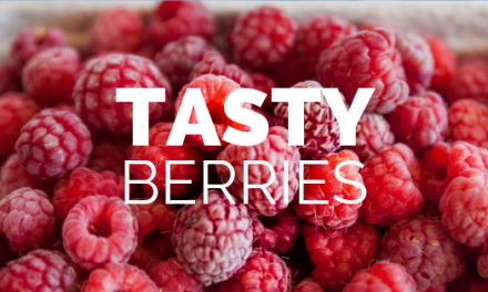 Tasty Berries that Lower Blood Sugar Naturally