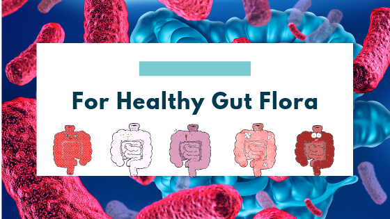 For Healthy Gut Flora – Use These 5 Tips