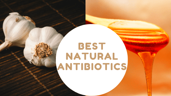 The Best Natural Antibiotics To Keep On Hand!