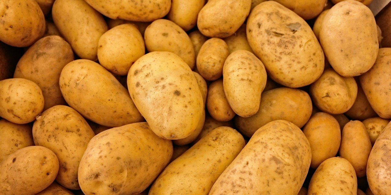 Encounters With The Humble Potato