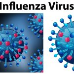 Influenza Has Virtually Vanished And We Know Why!